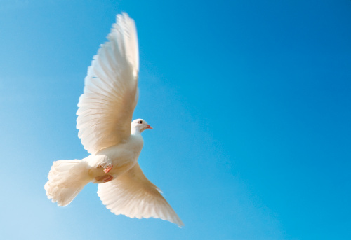 ¿Por qué el Espíritu Santo es importante?
