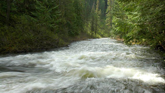 Un río se seca en solo 4 días en Canadá