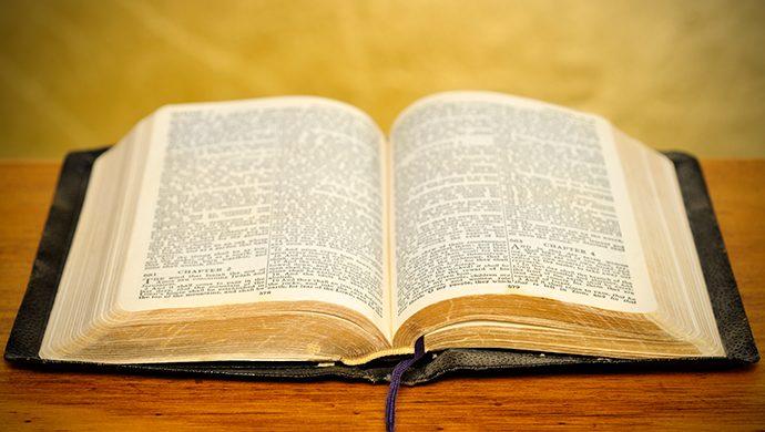Lea la Biblia en 1 año – 224° día