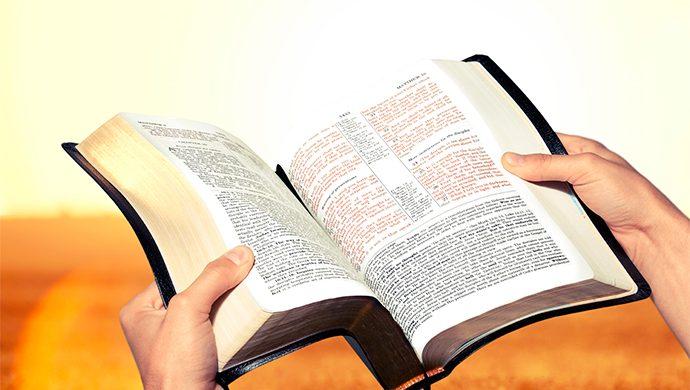 Lea la Biblia en 1 año – 339° día
