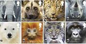 WWF conmemora su 50 cumpleaños