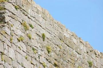 No hay muralla que la fe no derrumbe