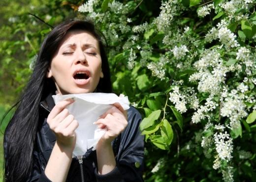 Con la llegada de la primavera, cuidado con el polen