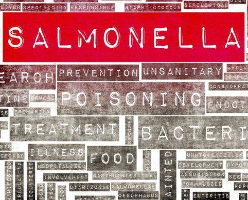Cuidado con la intoxicación alimentaria