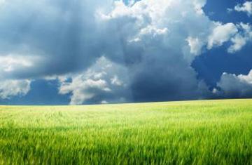 El Dios de los cielos y la tierra espera que lo busque con todas sus fuerzas. Venga este domingo