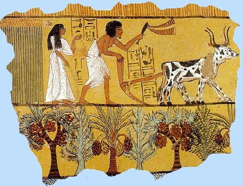 Ciencia en la Biblia – La dádiva del Nilo