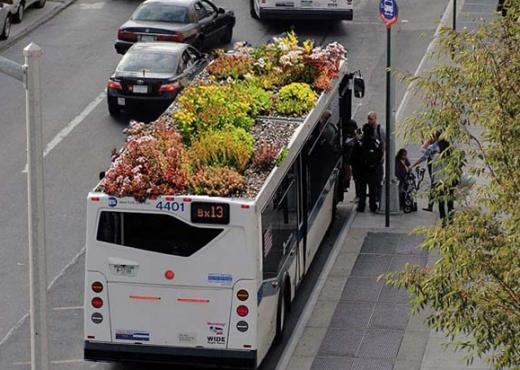 Autobús jardín