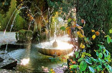 El agua milagrosa