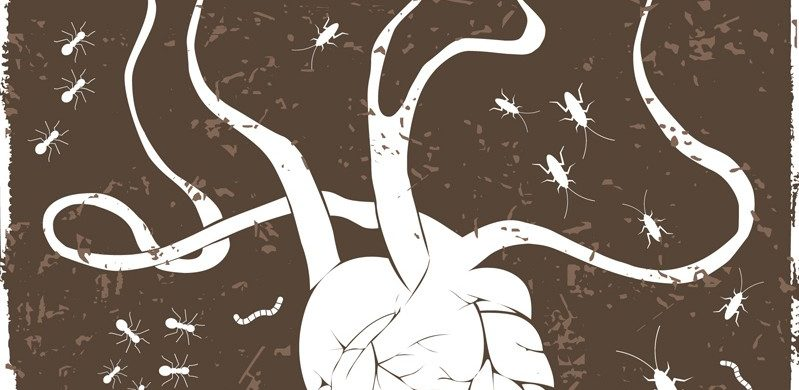 ¿Dejará que las malas semillas echen a perder sus planes?