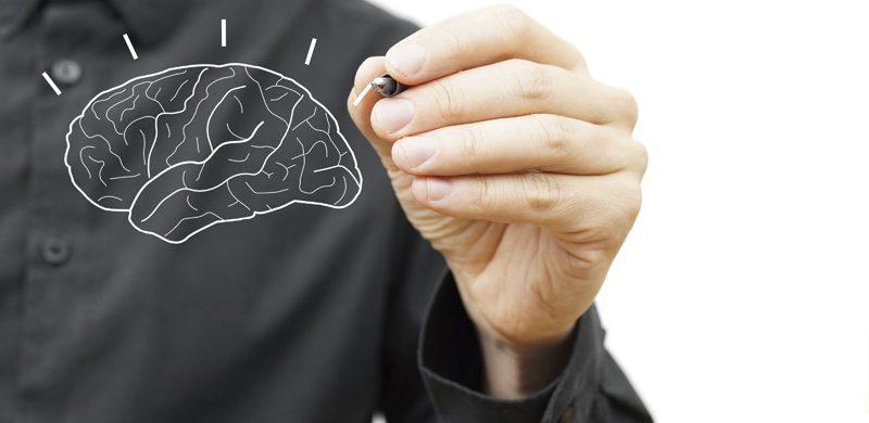 ¿Cómo está su desempeño cerebral?