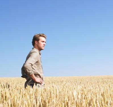 La paciencia fortalece la cosecha