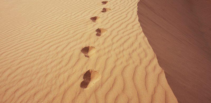 ¿Qué significado el desierto?