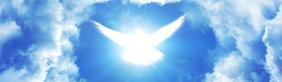 7º Día del Ayuno de Jesús