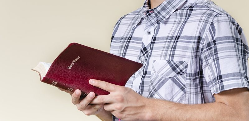 Deléitate en el Señor