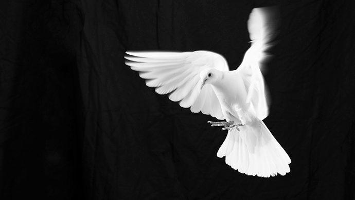 El Espíritu Santo es la dirección
