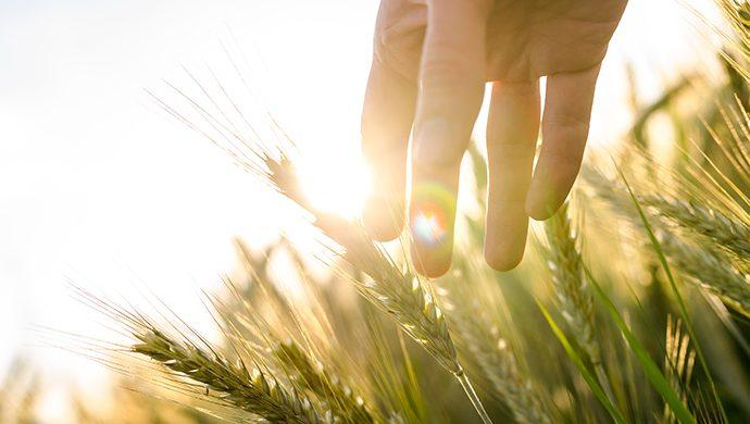 3 promesas de prosperidad de Dios para usted