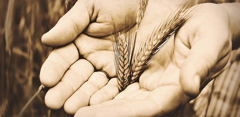 La santidad del diezmo