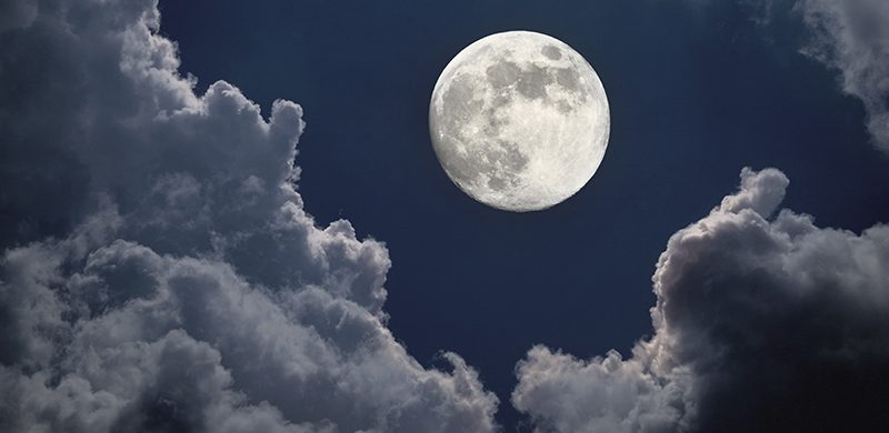 Propósito de Juan 15: Bajo la luz de la luna llena