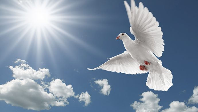 El deseo del Espíritu Santo