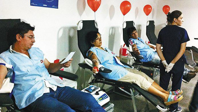 Donación de sangre en Flores