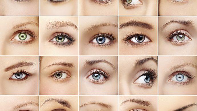 Guía práctica sobre las cejas