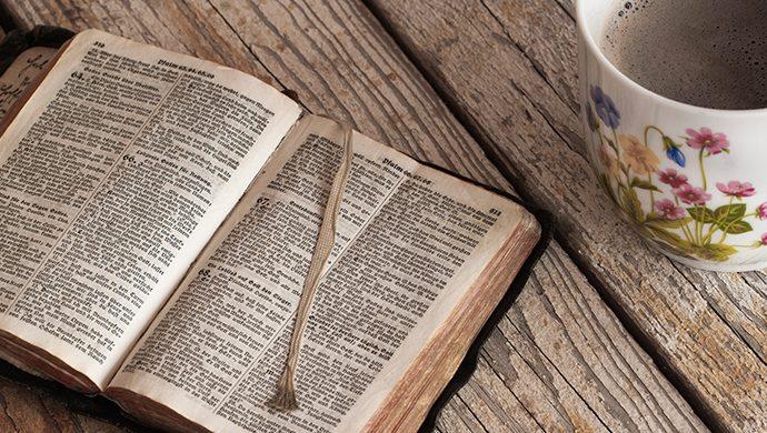 Vea 7 motivos para leer la Biblia