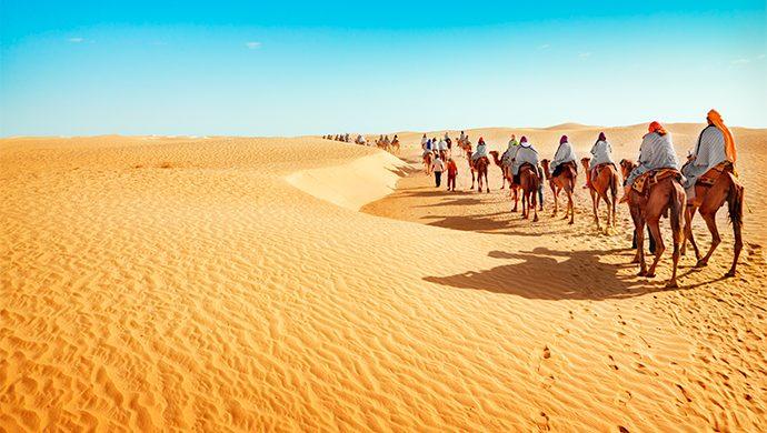 ¿Cuántos años estuvieron los israelitas en el desierto?