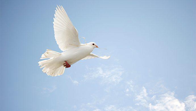 El Espíritu Santo no es una opción