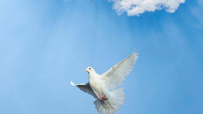 La fe que viene del Espíritu Santo
