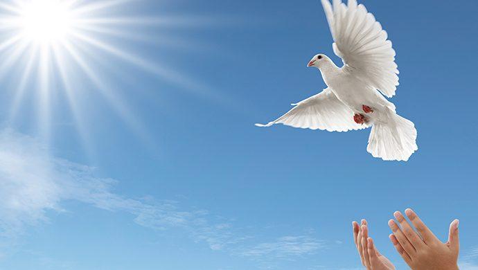 Alma viviente vs. Espíritu Vivificante