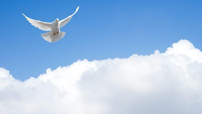 El Espíritu Santo no viene por casualidad