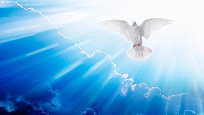 ¿Por qué muchos no reciben el Espíritu Santo?