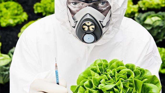Alimentos manipulados