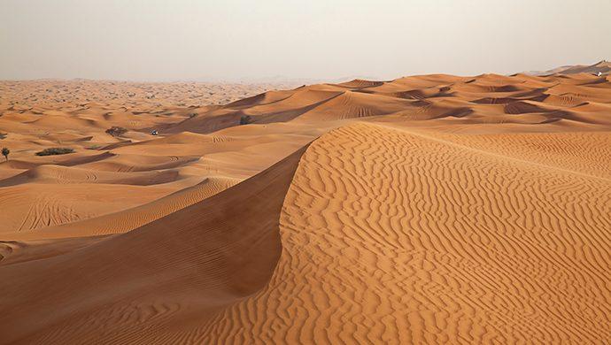 ¿Usted está preparado para el desierto?