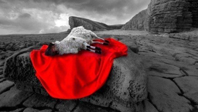 El Altar del sacrificio separa lo sincero de lo fingido