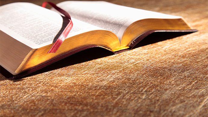 Lea la Biblia en 1 año – 13° día