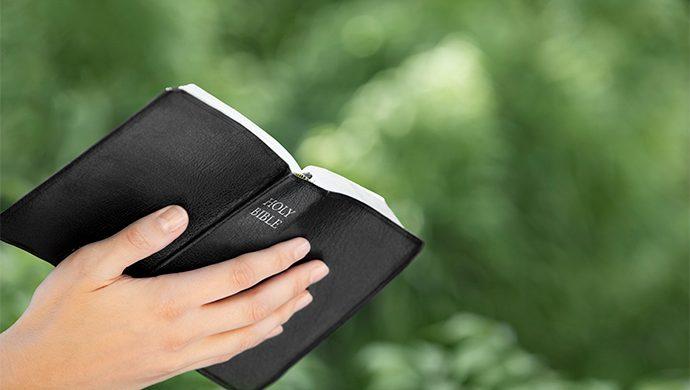 Lea la Biblia en 1 año – 10° día