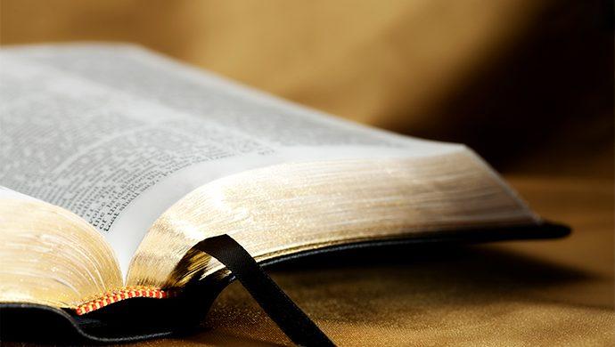 Lea la Biblia en 1 año – 23° día