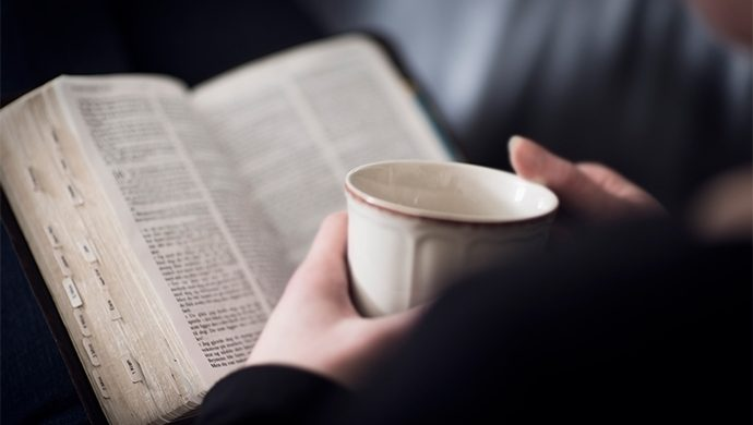 Lea la Biblia en 1 año – 12° día