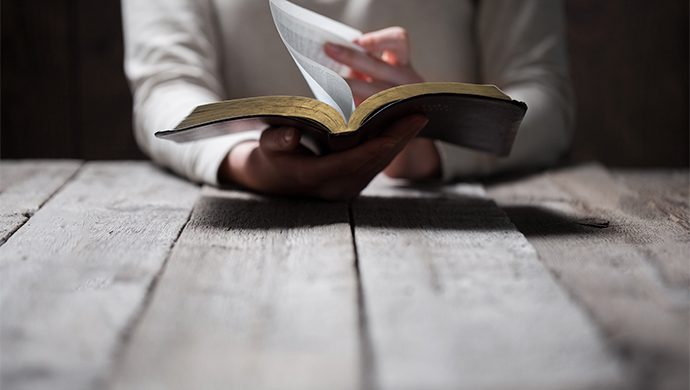 Lea la Biblia en 1 año – 30° día