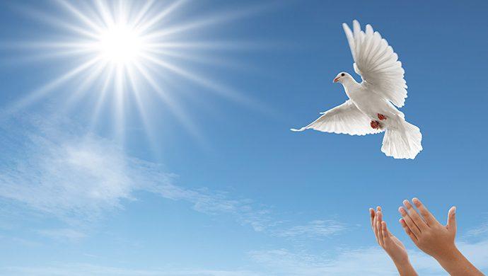 Los dos tipos de paz