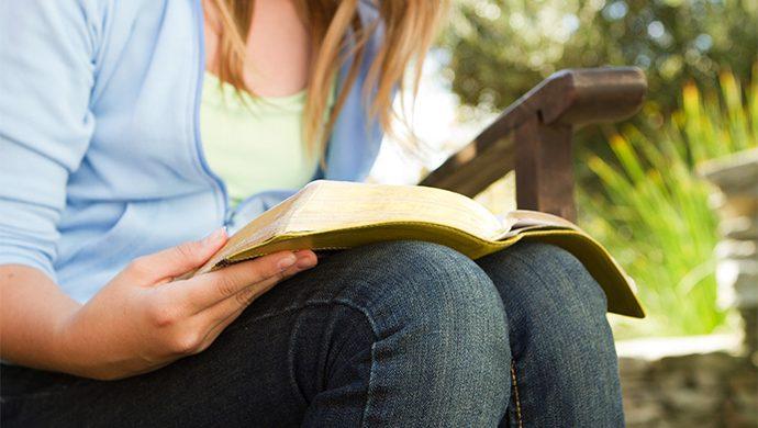 Lea la Biblia en 1 año – 33° día