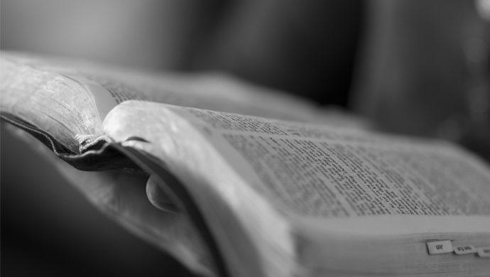 Lea la Biblia en 1 año – 43° día