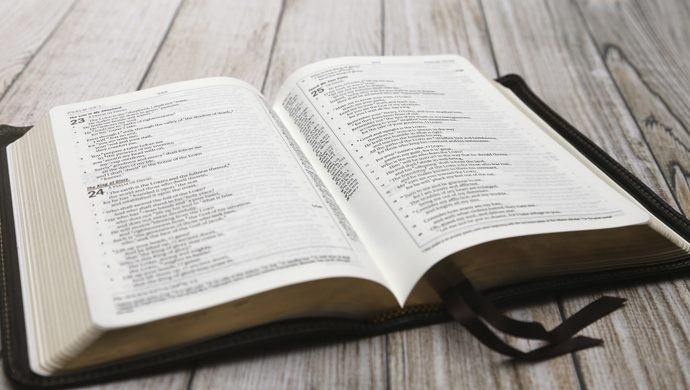 Lea la Biblia en 1 año – 40° día