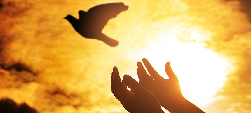 El Dios Espíritu Santo
