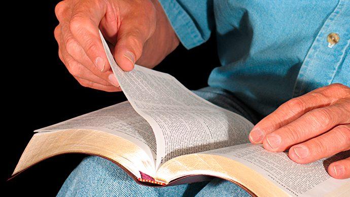 Lea la Biblia en 1 año – 81° día