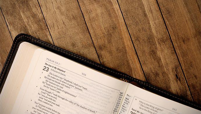 Lea la Biblia en 1 año – 85° día