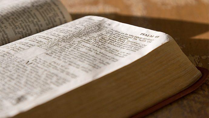 Lea la Biblia en 1 año – 101° día