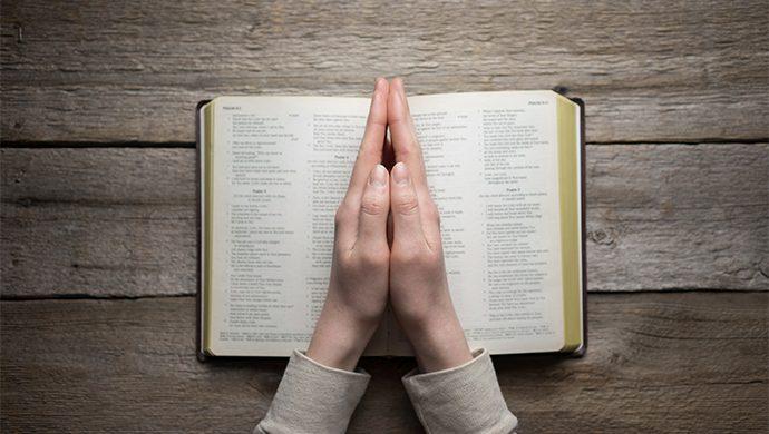 Lea la Biblia en 1 año – 115° día