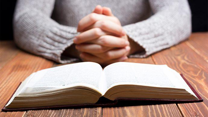 Lea la Biblia en 1 año – 113° día